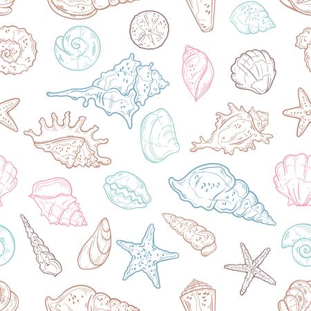 Ilustraciones de dibujo vectorial. Diferentes tipos de conchas marinas.