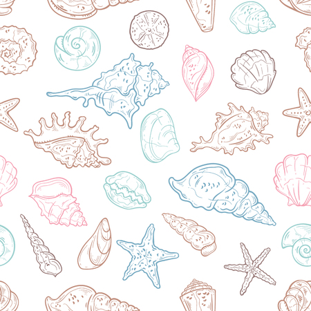 Vector sketching illustrations. Different types of seashells.