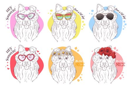 Vector sketch-style portraits of collie dogs with accessories: glasses, flowers.
