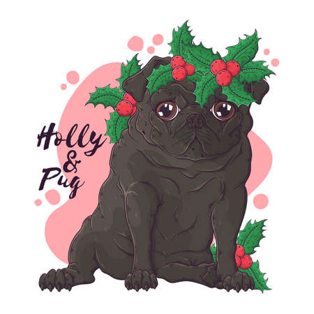 Vector hand drawn illustrations. Portrait of cute pug dog in Christmas accessories. Each object can be changed and moved for your design.