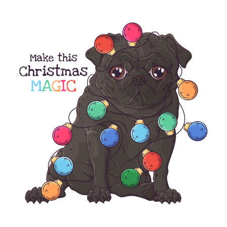 Vector hand drawn illustrations. Portrait of cute pug dog with Christmas garland. Each object can be changed and moved for your design.