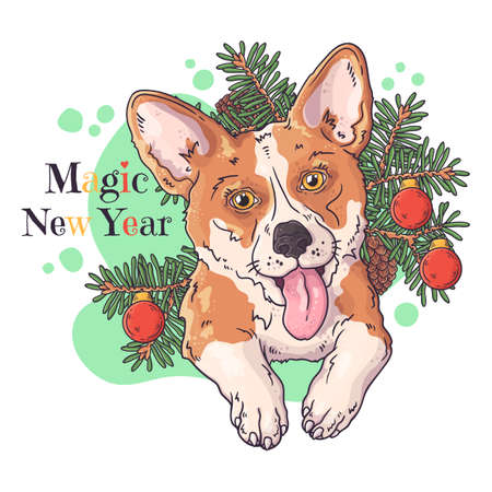 Vector hand drawn illustrations. Portrait of cute corgi dog with christmas tree. Each object can be changed and moved for your design. 向量圖像