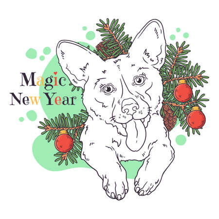 Vector hand drawn illustrations. Portrait of cute corgi dog with Christmas tree. Line art. Each object can be changed and moved for your design. 向量圖像