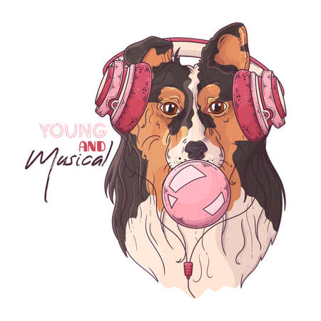 Vector hand drawn illustrations. Portrait of cute collie dog in musical headphones inflates a bubble of gum. Each object can be changed and moved for your design.
