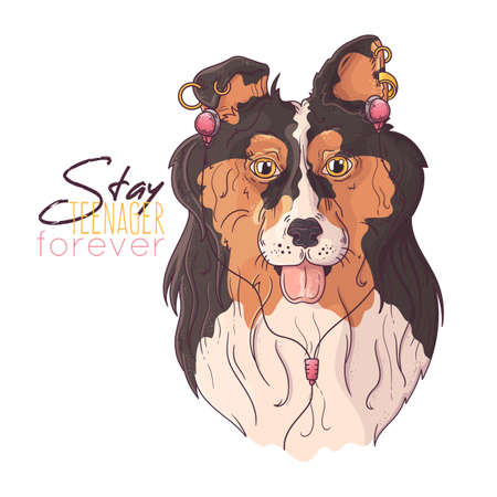 Vector hand drawn illustrations. Portrait of cute collie dog in musical accessories. Each object can be changed and moved for your design. 向量圖像