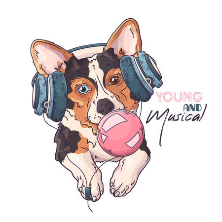 Vector hand drawn illustrations. Portrait of cute corgi dog in musical headphones inflates a bubble of gum. Each object can be changed and moved for your design.