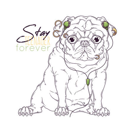 Vector hand drawn illustrations. Portrait of cute pug dog in musical accessories. Each object can be changed and moved for your design.