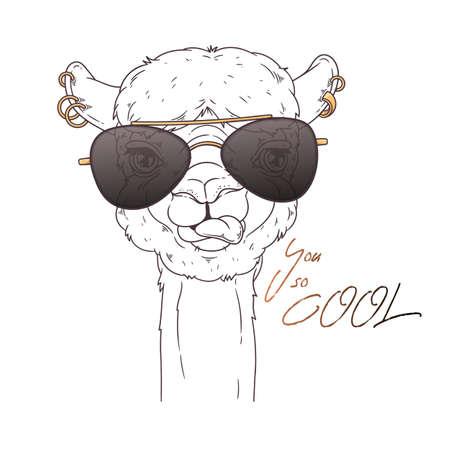 Hand drawn portrait of cute alpaca Vector. 向量圖像