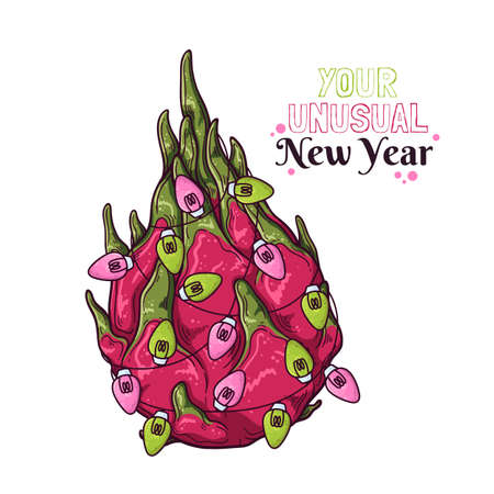 Vector hand drawn dragon fruit are decorated with New Years lanterns. 向量圖像