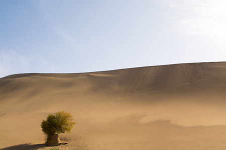 gobi: landscape photography of Gobi Desert, Dunhuang, Gansu Province, China Stock Photo