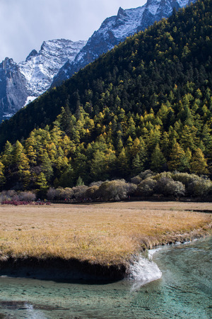 alpenglow: Mountain with snow, pine forest and brook in autumn, taken in the evening, Yading, Sichuan, China