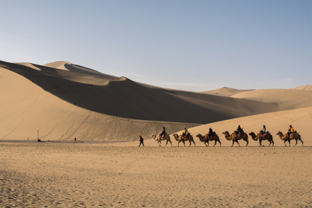 gobi desert: Dunhuang,Gansu, China - October 11, 2014: Group of tourists are riding camels in the desert at Dunhuang City , China. This place is a part of silk road in the history.