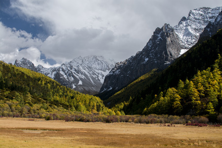alpenglow: Mountain with snow and pine forest in autumn, Yading, Sichuan, China