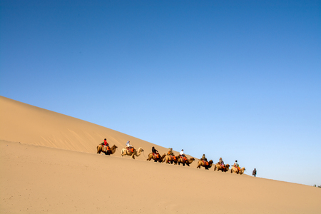 Dunhuang,Gansu, China - October 11, 2014: Group of tourists were riding camels in the desert at Dunhuang City , China. This place is a part of silk road in the history.