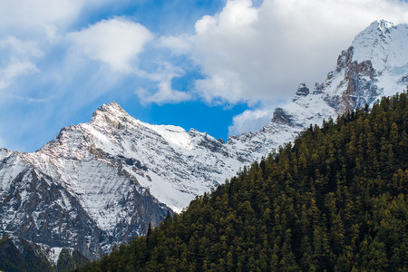 Mountain with snow and pine forest in a sunshine day of autumn, Yading, Sichuan, China Stock Photo