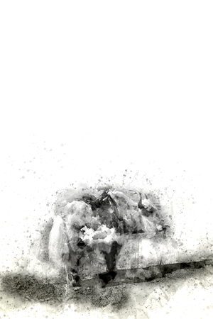 text area: Yak watercolor painting in monotone with text area, digital illustration Stock Photo