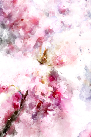 Pink cherry blossom abstract image, digital watercolor painting
