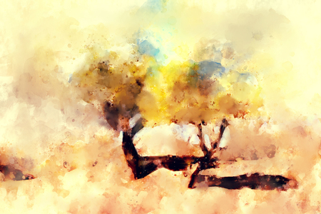 Abstract painting of colorful trees in autumn in warm tone