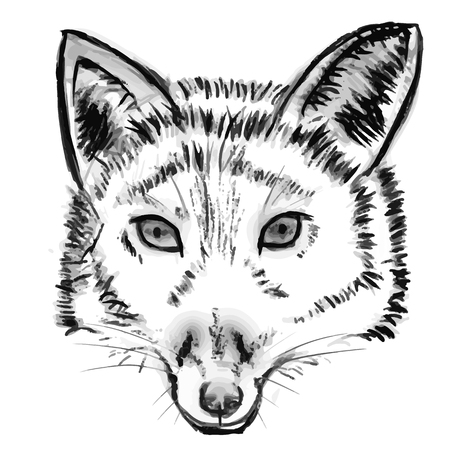 Black and white hand drawn image of fox head, vector illustration Stock Photo