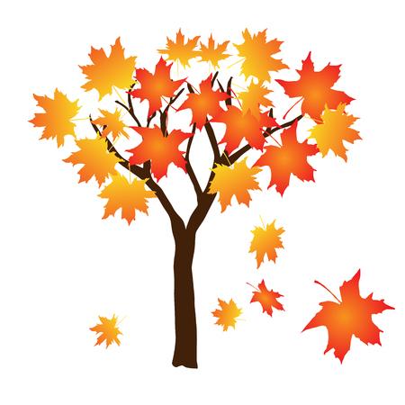 Herbstbaum mit fallenden Blättern, Vektorillustration auf weißem Hintergrund Vektorgrafik