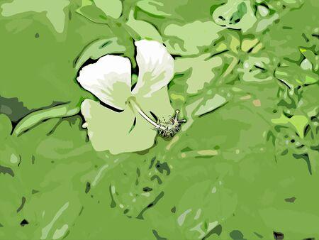 Digital painting of flowers, illustration of flowers for background Reklamní fotografie