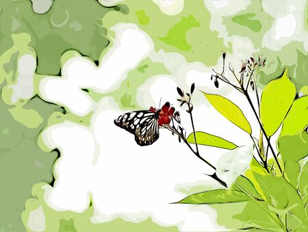 Digital painting of butterfly, oil painting illustration