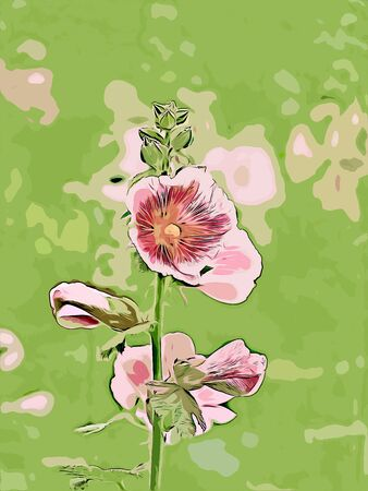 Digital painting of wildflowers, illustration of wildflowers for background