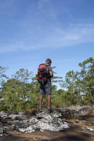 Man with backpack standing on cliff, looking at forest with blue sky background