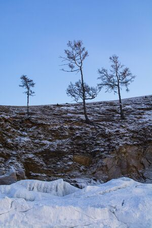 Trees in winter on cliff, landscape image, landscape photography