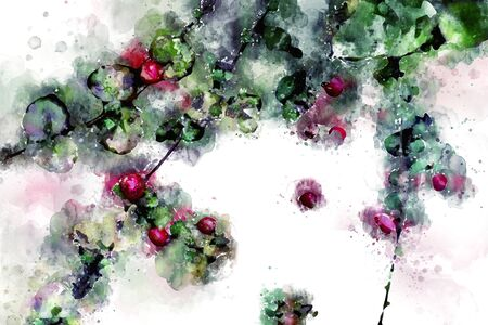 Digital watercolor painting of red wild fruit with green leaves