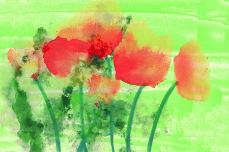 Watercolor painting of red poppies on green background