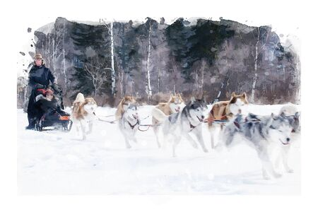 Digital watercolor painting of sled dogs, dogs running on snow, landscape with animal illustration Stock Photo