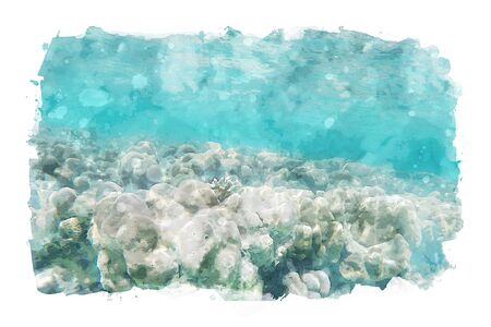 Watercolor painting of coral under sea water, art illustration of aquatic animals