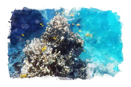 Watercolor painting of sea fish sea water, art illustration of aquatic animals
