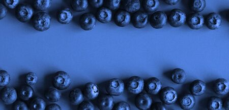 Blueberries on blue paper background, dark tones image with space for text
