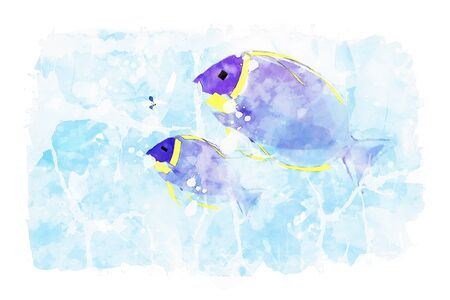 Two sea fish on blue watercolor background, blue tones image, summer watercolor painting Stock Photo