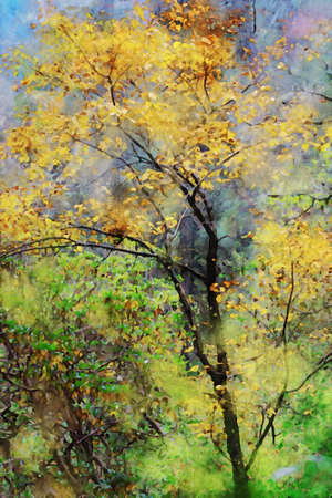 Digital painting of autumn tree with yellow leaves, watercolor texture on image