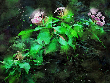 Digital painting of pink wild flower with green leaves, watercolor texture on image
