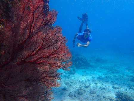 Man free-diving underwater with corals view, water sport activity