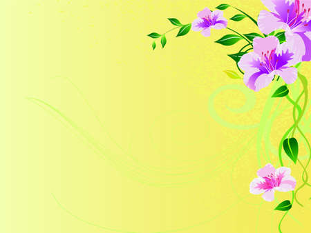 abstract vector flower background photo