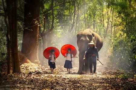 Community life. School children and elephants. Student little asian are raising elephants, Tha Tum District, Surin, Thailand. Zdjęcie Seryjne
