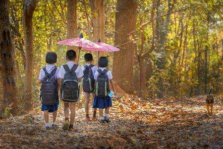 Życie społecznośći. Chłopiec i dziewczynka trzyma czerwony parasol z psem idzie po lesie do szkoły. Grupa szkolnych chłopców i dziewcząt w mundurach w lesie. Dzielnica Tha Tum, Surin, Tajlandia.