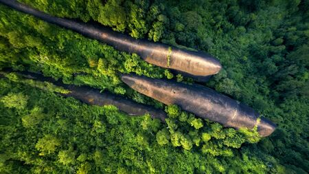 Three whale stones. Bird eye view shot of three whales rock in Phu Sing Country park in Bungkarn, Thailand.
