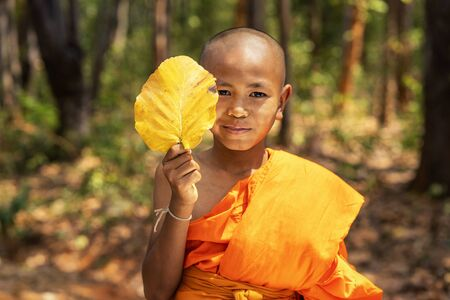 Novices smile are holding the leaves of the tree. Young Buddhist novices in forest in old temple at sunset time. Thailand. Selective focus.
