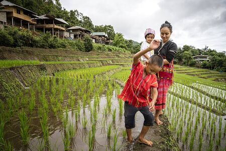 Pakhayo family Walking on the rice terraces. Ban Pa Bong Piang Northern region in Mae Chaem District Chiangmai Province That has the most beautiful rice terraces in Thailand.