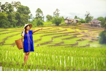 Pakhayo girl Walking on the rice terraces. Ban Pa Bong Piang Northern region in Mae Chaem District Chiangmai Province That has the most beautiful rice terraces in Thailand.