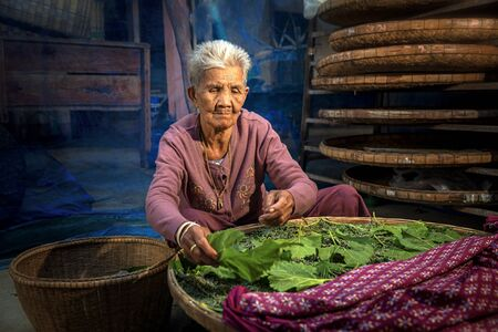 Craftsmen of Thai Silk. Crafts and craftsmanship. Row of bamboo weave, Elderly women are raising silkworm cocoon combined with mulberry leaves to be used for weaving. Stockfoto