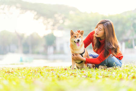 Pet lover concept. An Asian woman is sitting with a Shiba Inu dog by the pool. The girl plays with the Shiba Inu dog in the backyard.