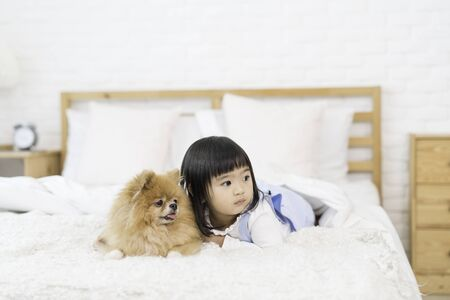 Pet Lover Concept. Girl and small dogs Pomeranian Spitz Looking forward. Asian girl and puppy looking forward in bed room.