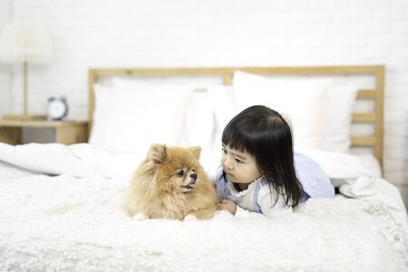 Pet Lover Concept. Girl and small dogs Pomeranian Spitz Looking forward. Asian girl with her happy doggy on bed in bedroom.